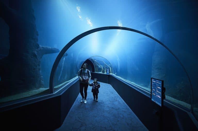 Lausanne Aquarium